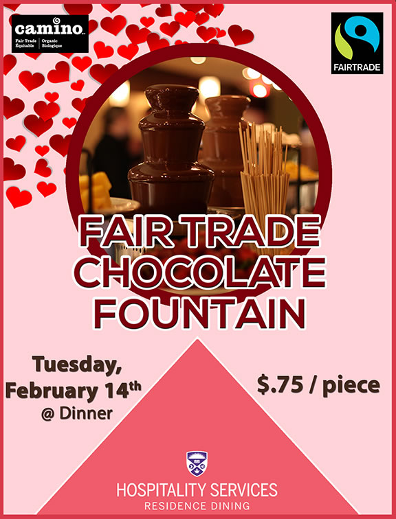 Fair Trade Chocolate Fountain